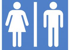 Gender Names
