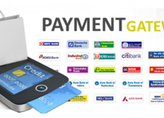 Starting a payment gateway company